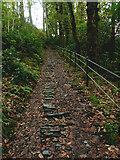 SN7477 : Footpath Devil's Bridge by Chris Gunns