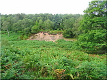SK0017 : Rugeley (Penkridge Bank) Camp - Rifle Range H by John M
