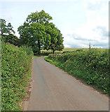 ST0007 : Cullompton: Ponsford Lane by Martin Bodman