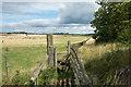 NZ3127 : Wooden fence alongside public footpath by Trevor Littlewood