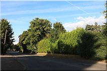 SU4665 : Andover Road, Newbury by David Howard