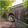 NH6569 : Alness Viaduct by valenta
