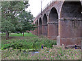 TL7006 : Railway Viaduct over the River Can, Chelmsford by Roger Jones