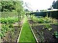 NJ6004 : Kitchen Garden, Findrack by Stanley Howe