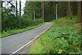 SH9624 : B4393 around Lake Vyrnwy by Stephen McKay
