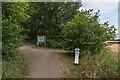 TQ1760 : Bridleway, Ashtead Common by Ian Capper