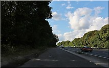 SU4547 : Layby on the A34, Whitchurch by David Howard