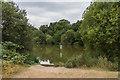 TQ1860 : Stew Pond by Ian Capper