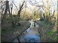 SU7506 : Stream at Hermitage Emsworth by Chris Gunns