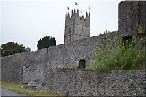 S2034 : Church of The Holy Trinity and town walls, Fethard by N Chadwick