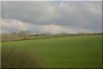 SW9049 : Cornish Pasture by N Chadwick
