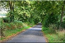 SU5751 : Malshanger Lane by David Martin