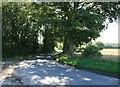 TL7828 : Peterfield's Lane by Paul Franks