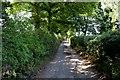 SE1326 : Coley Hall Lane by Chris Heaton