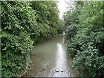 TL3949 : River Cam by Matthew Chadwick