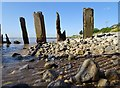 TA1128 : Humber Estuary : Week 35