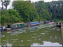 SP6989 : Moorings near Foxton in Leicestershire by Roger  Kidd