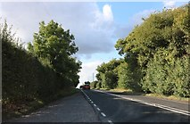 SU4337 : The A272, Sutton Scotney by David Howard