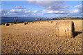 NH7665 : Round bales at Greenhill by Walter Baxter