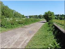 TQ1773 : The Thames Path National Trail near Petersham by Dave Kelly