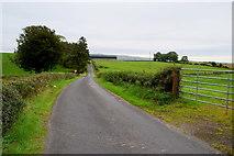 H4178 : Cashty Road, Killinure by Kenneth  Allen