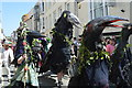 TQ8209 : Jack in the Green Festival 2018 - ravens by N Chadwick