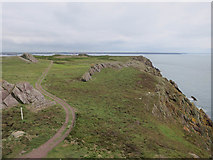SM7204 : Skokholm from the lighthouse by Hugh Venables