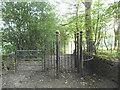 SE1238 : Metal gate on Sheriff Lane by Stephen Craven