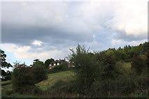 SU4358 : Fields by the A343, Hollington Cross by David Howard