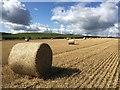 NT7572 : Bales in the Fields at Birnieknowes : Week 36