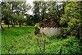 H4171 : Ruined cottage, Tamlaght Upper by Kenneth  Allen