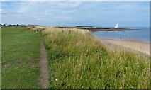 NZ3474 : Path along the coast at the Whitley Bay Mini Golf Course by Mat Fascione