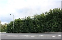 SU4967 : London Road, Shaw by David Howard