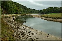 SD0995 : River Esk by Mick Garratt