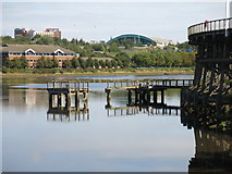 NZ2362 : Derelict landing stage and the western end of Dunston Staiths by Mike Quinn