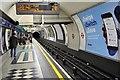 TQ3081 : Piccadilly Line, Holborn by N Chadwick