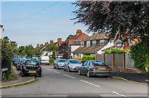 TQ2160 : Albert Road by Ian Capper