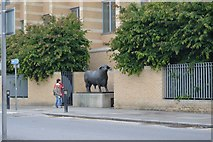 SP5006 : Bull statue outside Oxford Station by N Chadwick
