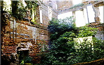 ST5295 : Piercefield House Ruins, nr Chepstow 1991 by Ray Bird
