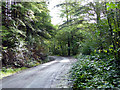SH7707 : Forestry road in Cwm Glesyrch by John Lucas