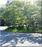 TQ5941 : Roundabout, Barnetts Way by N Chadwick