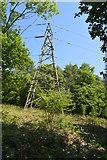 TQ6043 : Pylon, Devil's Wood by N Chadwick