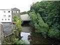 SD8022 : The River Irwell, Rawtenstall by Christine Johnstone