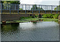 SK5704 : Weir walkway and River Soar in Leicester by Roger  Kidd