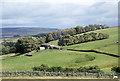 NY9536 : Farmland around Snowhope Close by Trevor Littlewood