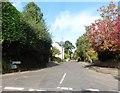 ST5313 : Burton Lane by Roger Cornfoot
