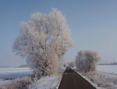 TL5264 : White Fen Droveway by Jay Haywood