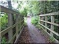 TQ6831 : Path around Bewl Water by Marathon