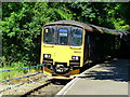 SX4368 : Class 150 2-carriage train approaches Calstock Station by Ruth Sharville