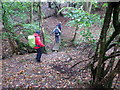 SO4904 : Croesi nant fach / Crossing a small  brook by Alan Richards
